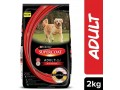purina-adult-dry-real-chicken-dog-food-supercoat-2kg-pack-small-0